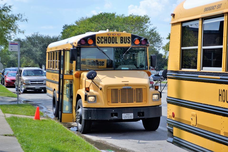 trasporto scolastico bus